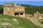 Podere Tegline Tuscany Holiday home